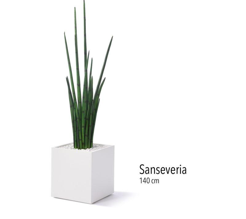 Büropflanze Kunstpflanze Sanseveria
