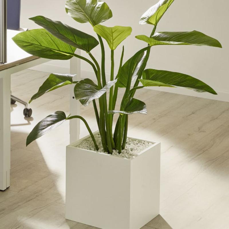 Büropflanze Kunstpflanze auf Boden