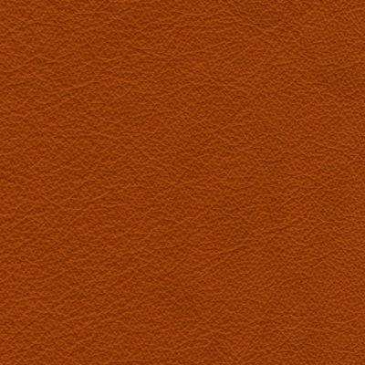 Stoffe Stühle Leder Cognac 840